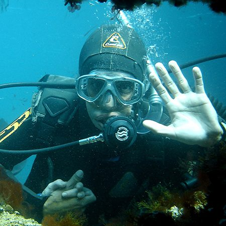 BUCEO-450X450-3